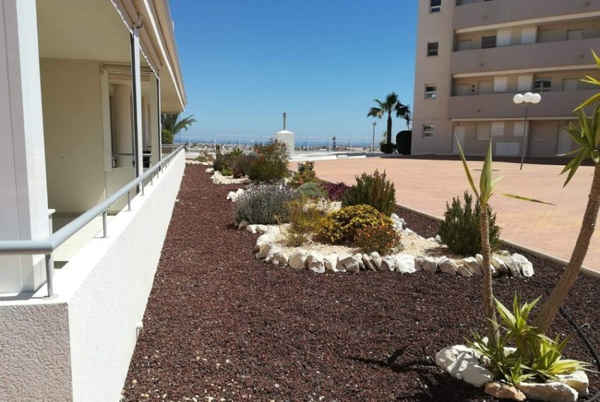 9280-apartment-for-sale-in-los-dolses-67423-large