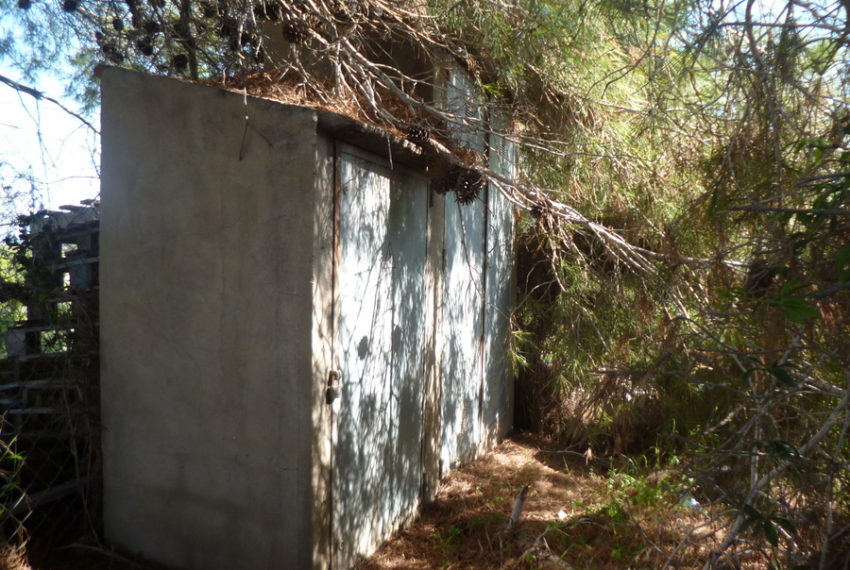 9672-land-for-sale-in-las-mimosas-73549-large