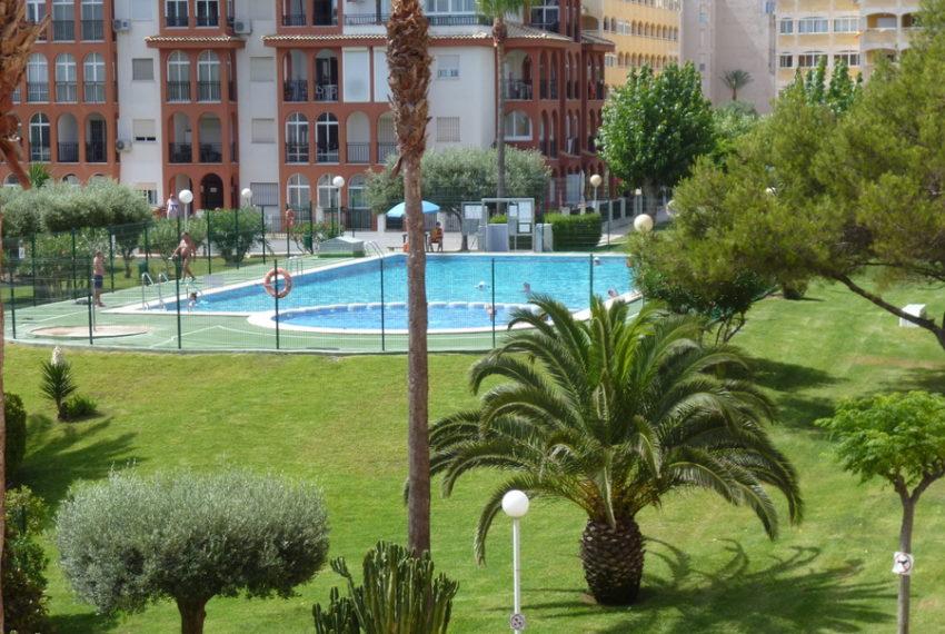 9864-apartment-for-sale-in-la-mata-76777-large