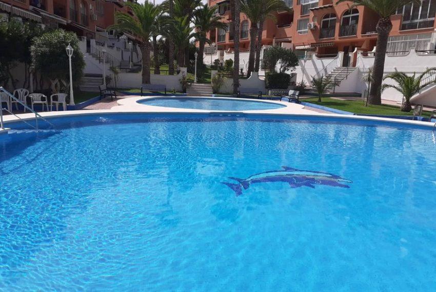 9921-apartment-for-sale-in-la-mata-77817-large